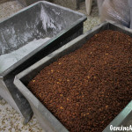 Almonds and sugar in Estepa