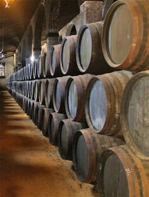 Sherry casks in Sherry Bodega. Cadiz and Jerez day trip