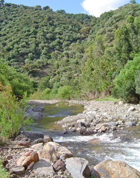 Hiking tours of the Genal Valley. Southern Spain