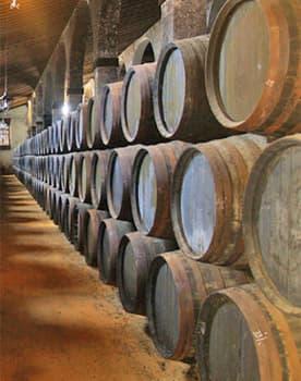 Sherry bodega in Jerez. Private sherry day trip