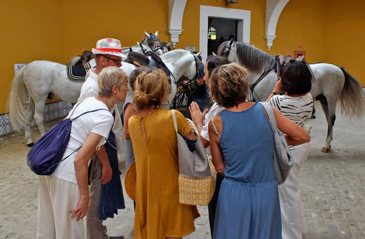 A guide taking his guests behind the scenes in the Royal School of Equestrian Art in Jerez