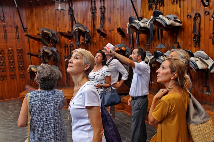 Behind the scenes in the Royal School of Equestrian Art during a Spain trip with friends