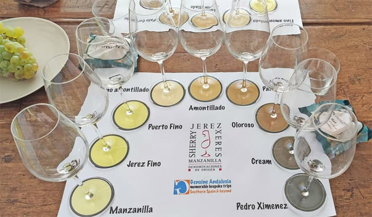 Tasting mat for a wine tasting in a Southern Spanish villa