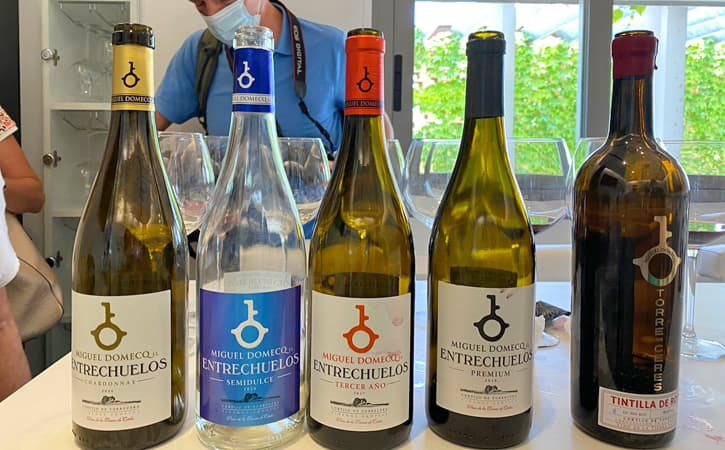 5 bottles of wine from Bodega Miguel Domecq opened during a guided tour to the winery